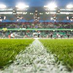 football grass ptich
